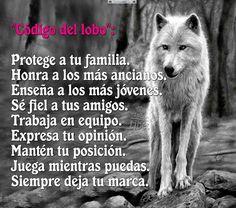 Código del lobo ..................................
