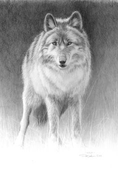 Edward Spera Original Gallery - Pencil Works / Wolf Pencil