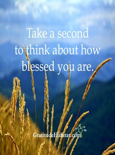 You are blessed.  Visit us at: www.GratitudeHabitat.com