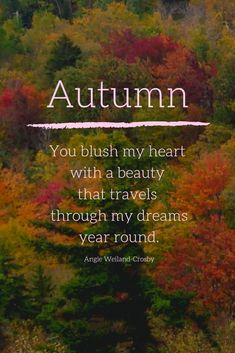Autumn Quotes on Beautiful Pictures that will Enchant & Deepen your Soul Inspirational Artwork, Short Inspirational Quotes, Leaf Quotes, Tree Quotes, Soul Quotes, Nature Quotes, Forest Quotes, Nature Nature, Meaning Of Autumn