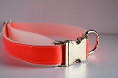 Neon Salmon Dog Collar - The Custom Collar