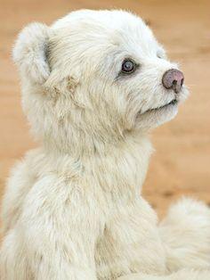 Three O'Clock Bears: Oggie on eBay later