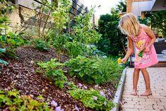 Naschmeile im Garten. Über frische Beeren und Kräuter im Garten freuen sich Groß und Klein. Weitere Ideen finden Sie auf tulpenbaum.at Lily Pulitzer, Green Living Rooms, Gardening, Lilly Pulitzer