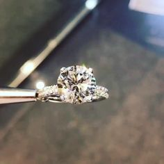 Wow!!! It's Gorgeous. Diamond Halo engagement ring Platinum. Who would not die for this beauty ring??? SLVH ♥♥♥♥ Wedding Rings For Bride Diamonds, Big Diamond Wedding Rings, 3ct Diamond Ring, Weding Ring, Dimond Ring, Black Wedding Rings, Beautiful Diamond Rings, Platinum Wedding Rings, Platinum Ring