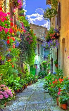 All flowery italy