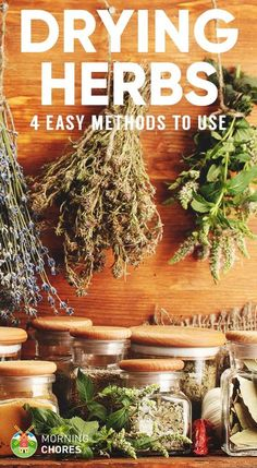 Do you grow a herb garden? Then you must preserve your herb harvest so you can use them later. Here are 4 drying herbs methods you should try.