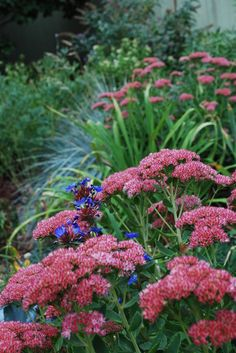 """""""Planning to install a new vegetable or flower garden next spring? Now's a great time to prepare the soil,"""" writes Colorado landscape design..."""
