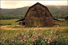 AMERICA BEAUTIFUL / barn in arkansas
