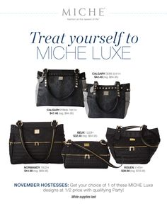 We All Deserve The Very Best Treat Yourself Or Someone Special To A Luxe Interchangeable Miche Purse