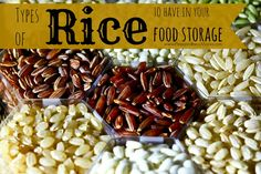 Understand the best types of rice in food storage, Concentrate on the grains that will store for the longest time. How to store brown rice.