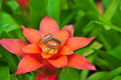 свадебные кольца #wedding #travel