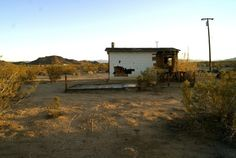 Homestead fixer-upper in Joshua Tree, CA.  Contributed by...  #Bach #Cabin Pinned by www.modlar.com