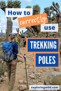 How to Use Trekking Poles