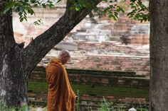 One philosophy that can help us to stop constantly self-blaming is Buddhism. Buddhism provides two essential truths that are difficult to perceive in the midst of self-blaming.