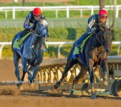 Arrogate and Mor Spirit THIS IS LITERARY A DREAM PHOTO!!!