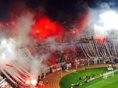 La hinchada mas grande Soccer Fans, Carp, Real Madrid, Football Casuals, Wall Decor, Sport, Amor, Football Soccer, Wall Hanging Decor