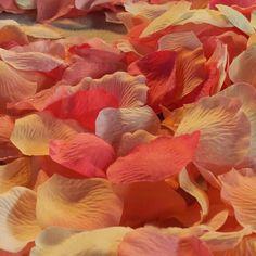 Rose Petals - Photo by Lisa Barr | @bridalease