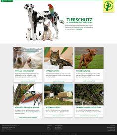 Webdesign - Tierschutzverein Pinneberg