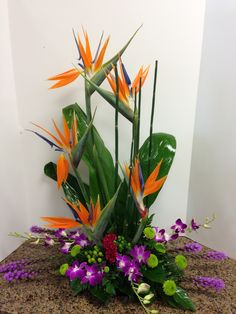 Beautiful Orchids and Birds of Paradise