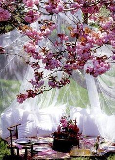 spring flowers and romantic picnic.