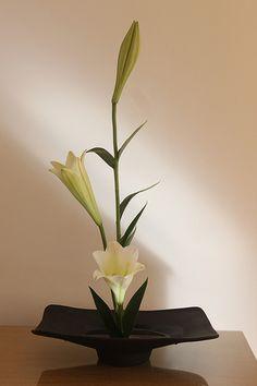 Vases – Home Decor : White moribana Ikebana Arrangements, White Flower Arrangements, Ikebana Flower Arrangement, Floral Centerpieces, Flower Vases, Cactus Flower, Arte Floral, Deco Floral, Flower Show