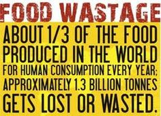 no food wasted - Google Search