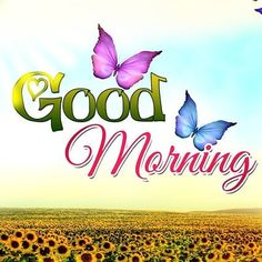 Are you searching for images for good morning motivation?Browse around this site for cool good morning motivation ideas. These funny pictures will bring you joy. Cute Good Morning Images, Good Morning Inspiration, Good Morning Funny, Good Morning Sunshine, Good Morning Picture, Good Morning Flowers, Good Morning Messages, Good Morning Greetings, Good Morning Good Night