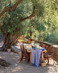 Traditional Outdoor Space by Saladino Group Inc. and Saladino Group Inc. in Santa Barbara, California
