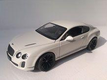 Bentley Continental Sport 1/24 modelcar24´s Webseite!