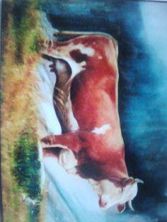 mucca del tirolo