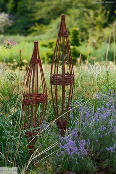 Rankspindel aus Weide