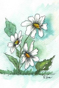 Pen & Ink Watercolor Daisies
