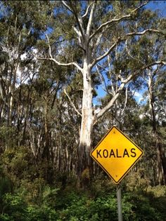 There's different road signs in Australia!