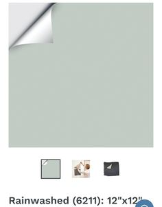 Floor Colors, Benjamin Moore, Computer Mouse, Flooring, Pc Mouse, Hardwood Floor, Mice, Floor, Paving Stones