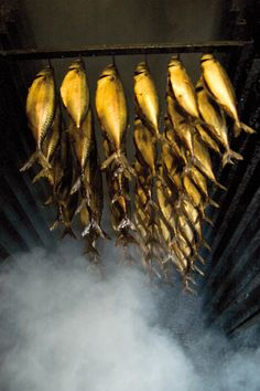 Danish-Smoked Herring. Bornholm. JAMSO HQ is located on Als 2hours north of Hamburg,Germany and 2 hours south from the HQ of Lego! JAMSO supports local, regional and global companies in Goal Setting, KPI Management and business intelligence solutions. http://www.jamsovaluesmarter.com
