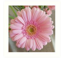 Art Print Pink Gerbera, Pink Carnations, Framed Prints, Canvas Prints, Art Prints, Floral Photography, Bunch Of Flowers, Wall Tapestry, Decorative Throw Pillows