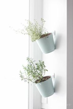 DIY hanging planters   julieblanner.com