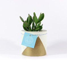Gold concrete planter pot | Schnelle Ideen | Pinterest ...