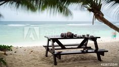 Stock Footage of A frame blend stop motion on the beach with a table in the sea sand, snacks, drinks and cocktails, have a good time under palm trees on a tropical island in Seychelles, wide shot. Explore similar videos at Adobe Stock Outdoor Sofa, Outdoor Decor, Cocktails, Drinks, Stop Motion, Seychelles, Stock Video, High Quality Images, Palm Trees