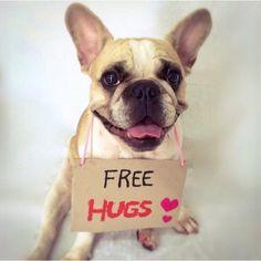Come on over for a big hug!  // Hoje é dia do abraço e eu tô destribuindo abraço fofinho grátis! Quem quer?  #diadoabraço