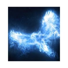 Dumbledores phoenix patronus.jpg ❤ liked on Polyvore featuring harry potter, pictures, hp, patronus and animals