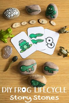 DIY Frog Life Cycle Story Stones to make for kids to use to help them understand the lifecycle of the frog.Great to add to your nature table or use for them to tell you what happens as frog eggs change to a frog. Frog Activities, Spring Activities, Sequencing Activities, Lifecycle Of A Frog, Frog Theme, Frog Life, The Nativity Story, Frog Crafts, Painted Rocks Kids