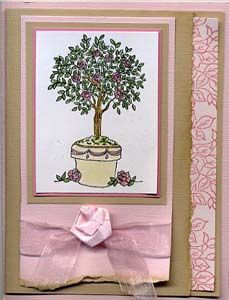 Cameo Card & DIY Directions from GreatImpressionsStamps.com