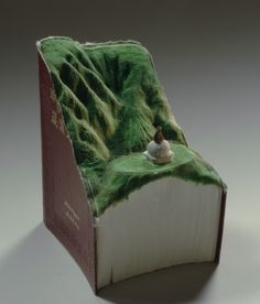 Guy Laramee, Artist, Carves Incredible Landscapes Out Of Vintage Books (PHOTOS)