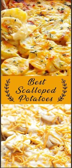 These are seriously the BEST Scalloped Potatoes!! Perfectly creamy, cheesy, and so delicious. #potatoes #cheesy #Creamy