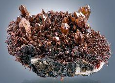 Scepter Quartz crystals with an iridescent Limonite coating -- From the Banská Štiavnica Mine, Schemnitz, Banská Štiavnica Mining District, Slovakia.