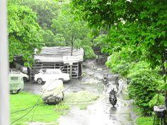 Kolkata Green Effect With Black & White