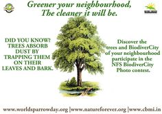 Discover the trees and BiodiverCity of your neighbourhood BiodiverCity Photo Contest is a Nature Forever Society initiative to involve citizens into the photo-documentation and conservation of flora and fauna found in and around human habitats.