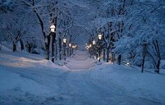 Lamp light walk way in the snow.