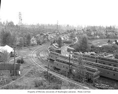 Forest Pictures, Locomotive, Trains, City Photo, Camping, Digital, Model, Campsite